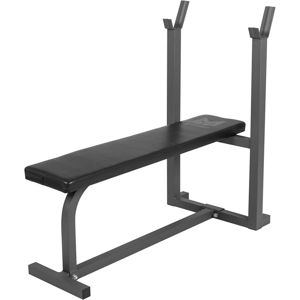GORILLA SPORTS GYRONETICS E-SERIES BENCH PRESS LAVICKA S DRZIAKOM